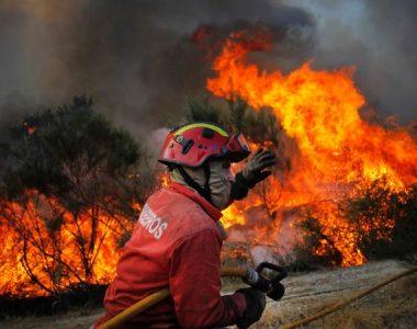 A Associação Académica de Lisboa também ajuda os bombeiros