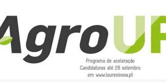 AgroUP, o novo programa de aceleração para empresas